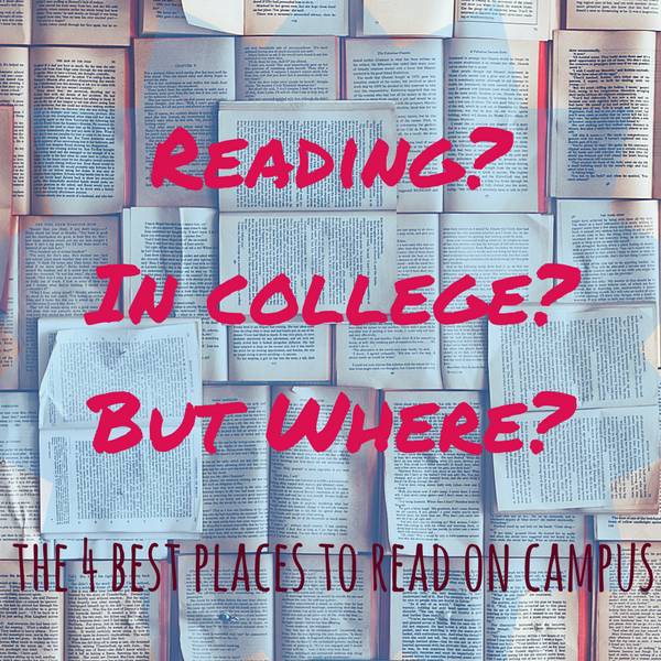 The 4 Best Reading Spots on My College Campus